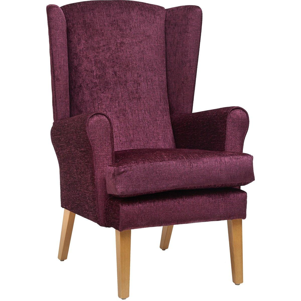 Ravenna Care Home Chair
