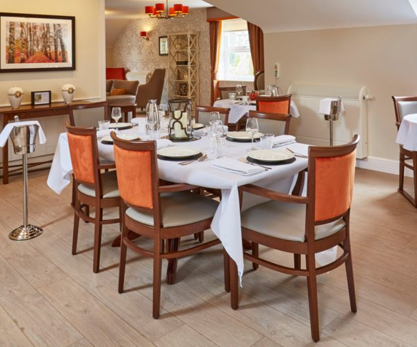 Rose Lodge - Care Home Dining Chairs